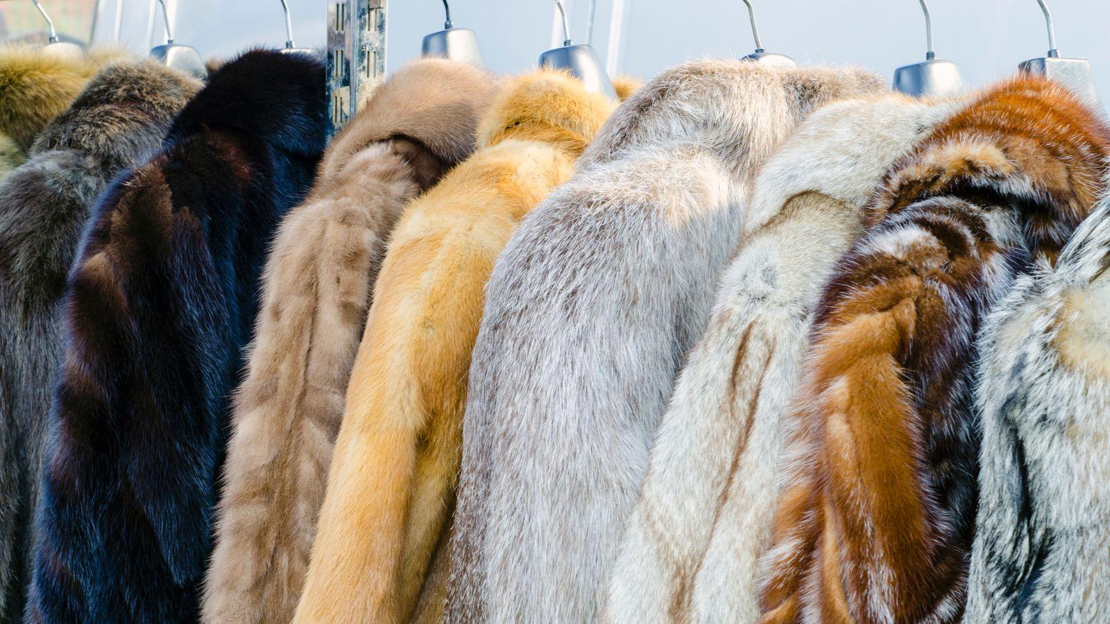 Fur coats arranged on hangers